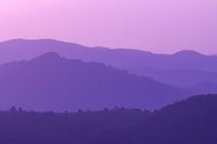 ultra violet purple summer landscape