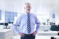Senior businessman in his office