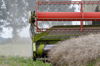Combine harvester in action