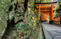 KYOTO, JAPAN - 09 FEB 2018: Tight shot of red wooden toriis in a path in Fushimi Inari Shire Temple with green musky rocks