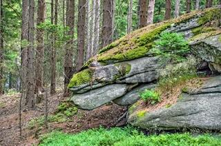 Übereinander geschlichte Steinformation aus Grant mit dem Aussehen eines Drachenkopfes im Wald beim Mandelstein im Waldviertel
