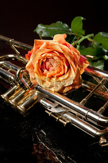 Rose And Trumpet
