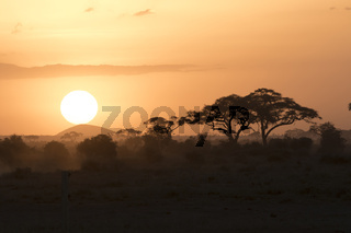 sunset in the African savanna in the dry season against the backdrop of hills and acacias