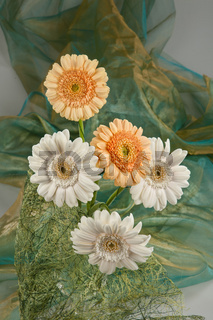 Flowers And Fabric
