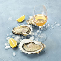 Fresh raw oysters on ice with a glass of white wine and lemon slices, square photo with copy space