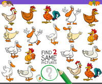 find two same farm birds game for kids