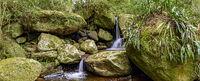 Small waterfall panoramic among the rainforest vegetation of Ilhabela island