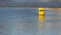 Yellow iron buoy floats in the blue water the river shows the level of the ships to the ships for a safe walk