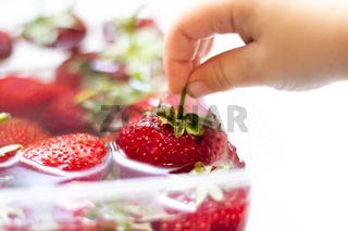 Strawberries in a bowl of water. Red berries. Seasonal berries in the water.