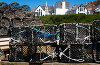 Fish Trap - I- Port Isaac- Cornwall - UK