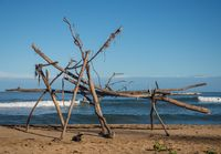 Surfer framed behind structure of driftwood on beach