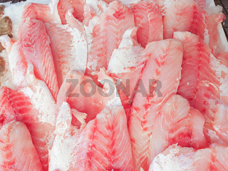 African Perch fillet on ice close up