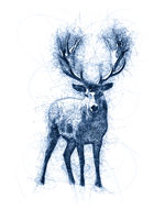 Great Deer Ballpoint Pen Doodle Illustration
