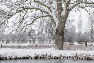 Winter im Münsterland
