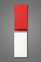 Blank open spiral notebook isolated on dark grey