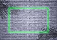 Neon Light on Brick Wall and Palm Leaf Shadows