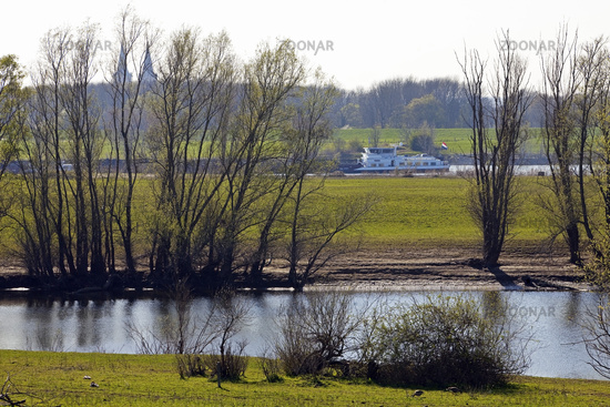 Lower Rhine landscape with cargo ship, Bislich-Vahnum, Wesel, Ruhr Area, Germany, Europe