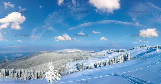 Morning winter calm mountain