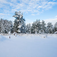 Snow-covered landscape in the countryside