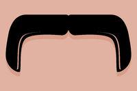 Handlebar Moustache Icon Vector