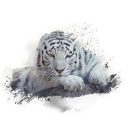 White tiger watercolor