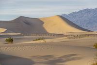 Scenic View Of A Desolate Arid American Desert