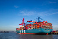 Container ship MOL Truth