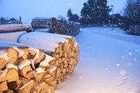 Firewood near a road illuminated