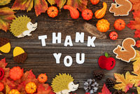Colorful Autumn Decoration, Text Thank You, Wooden Background