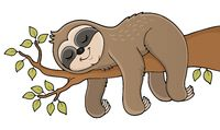 Sleeping sloth theme image 1
