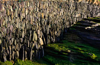 coastal wall - I - Trebarwith - Cornwall