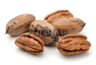 Group of pecan nuts