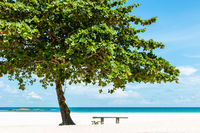 Beautiful tropical beach in Indonesia