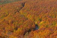 Aerial view Autumn Tohoku Japan