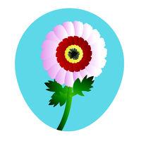 Mohit-Batch-5-Flower_Chrysanthemum_12.eps