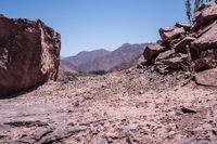 the desert rocks