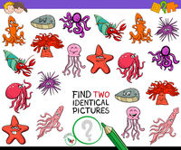 find two identical animals game for kids