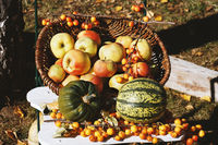 organic apples and pumpkins in basket autumn themed still life