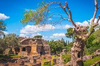 Tivoli - Villa Adriana in Rome - Lazio - Italy
