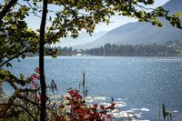 The Lake Alpsee 003. Germany