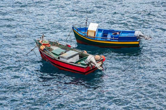 Fischerboote in Camara de Lobos auf der Insel Madeira, Portugal