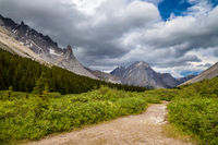 A hiking trail in the Highwood Pass of Kananaskis Country, Alberta