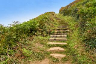 Alte Treppe aus Stein in der Natur