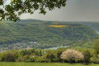 Moselle landscape