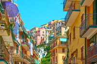 Street and houses in Manarola