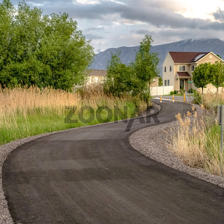 Square frame Paved road with yellow traffic delineator posts winding through a grassy field