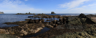 A zone of low tide during the summer low tide on the island of Medny on a summer sunny day