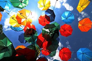 Multicolored umbrellas