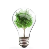 Green energy concept, tree inside light bulb