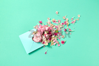 Fresh pink roses in handmade envelope on a turquoise background.